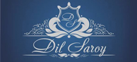 Dil Saroy